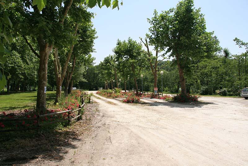 emplacement camping Lac de Neguenou