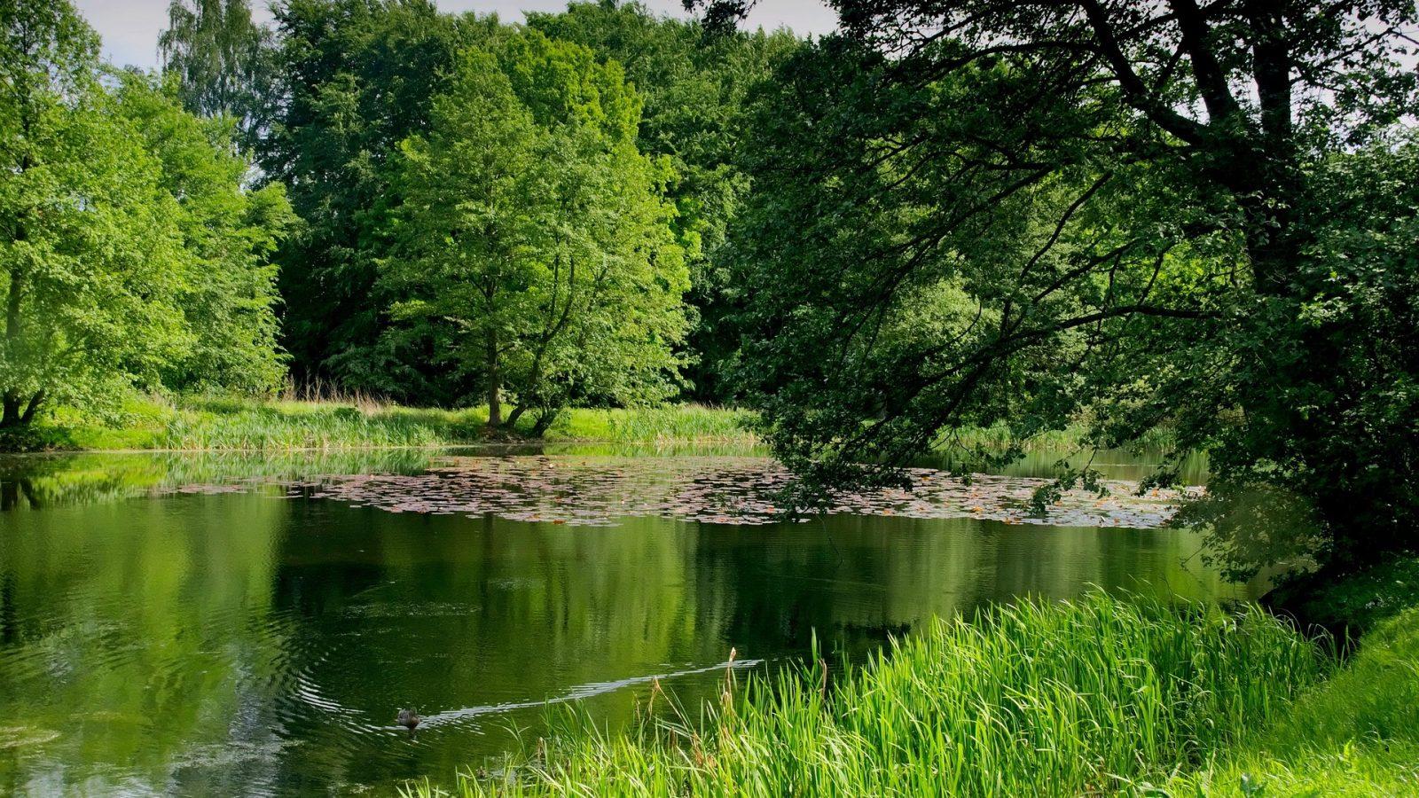camping bord du lac Lot