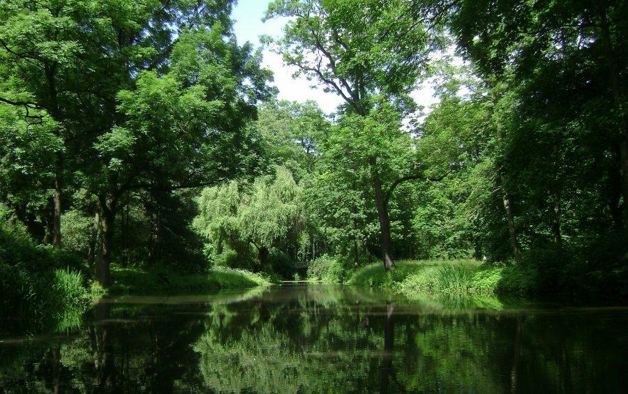 verdure camping lac de Neguenou
